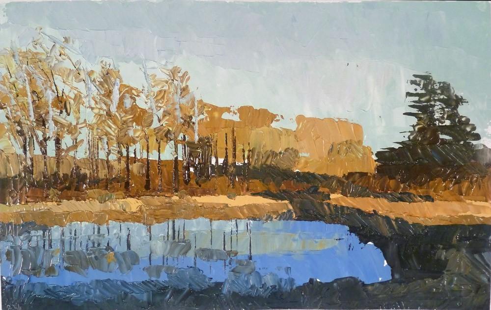 Pond Study 15