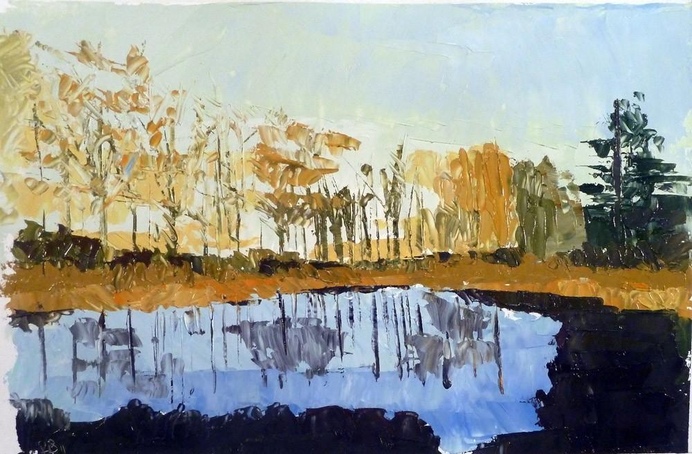 Pond Study 16
