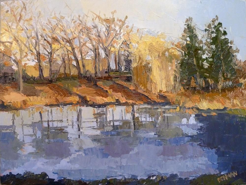 Pond Study 17
