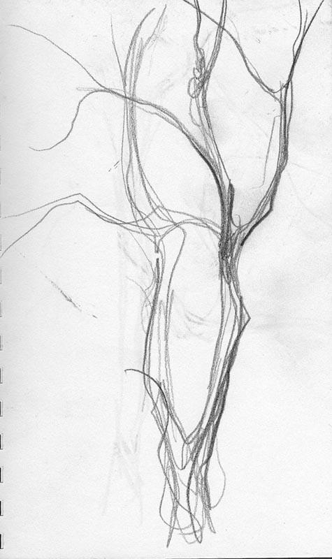Tree Gesture 1 Beki Borman